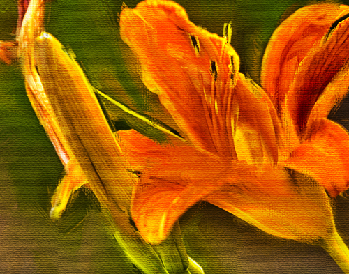 flower01detai